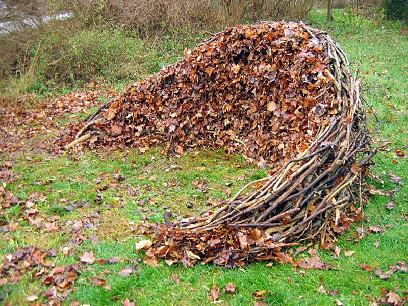 leaf-wall-DAG