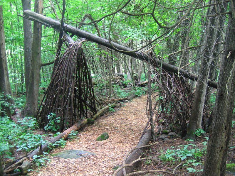 riversong-path-2
